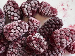 Boysenberries IQF 1kg SpeedyBerry